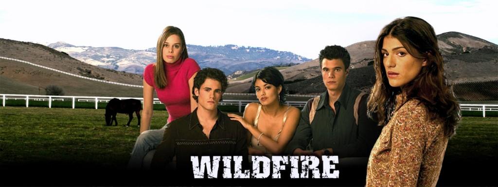 WILDFIRE BANNER 2